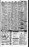 Irish Independent Thursday 02 February 1989 Page 21