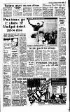 Irish Independent Saturday 04 February 1989 Page 7