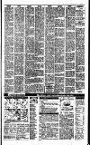 Irish Independent Monday 06 February 1989 Page 23