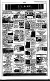 Irish Independent Friday 07 April 1989 Page 31