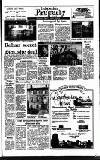 Irish Independent Friday 14 April 1989 Page 25