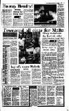 Irish Independent Saturday 04 November 1989 Page 17
