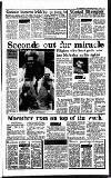 Irish Independent Tuesday 07 November 1989 Page 17