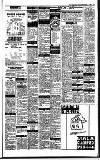 Irish Independent Tuesday 07 November 1989 Page 21
