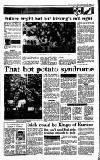 Irish Independent Monday 20 November 1989 Page 13