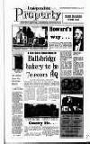 Irish Independent Friday 16 February 1990 Page 25