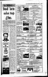 Irish Independent Friday 16 February 1990 Page 45