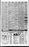 Irish Independent Friday 16 March 1990 Page 23