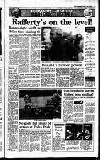 Irish Independent Friday 06 April 1990 Page 13