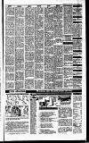 Irish Independent Friday 06 April 1990 Page 23