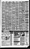 Irish Independent Wednesday 01 April 1992 Page 23