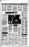 Irish Independent Monday 02 August 1993 Page 13