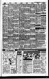 Irish Independent Monday 02 August 1993 Page 19
