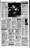 Irish Independent Tuesday 03 August 1993 Page 17