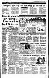 Irish Independent Wednesday 04 August 1993 Page 11