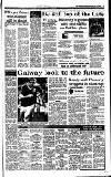 Irish Independent Wednesday 04 August 1993 Page 15