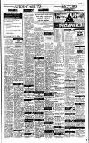 Irish Independent Wednesday 04 January 1995 Page 21