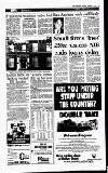 Irish Independent Tuesday 03 December 1996 Page 15