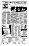 Irish Independent Friday 27 December 1996 Page 34