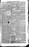 Tottenham and Edmonton Weekly Herald Saturday 31 July 1869 Page 5