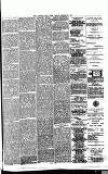 East Anglian Daily Times Friday 10 January 1890 Page 7