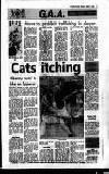Evening Herald (Dublin) Monday 03 April 1989 Page 35