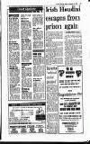 Evening Herald (Dublin) Friday 04 September 1992 Page 17
