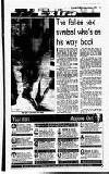Evening Herald (Dublin) Monday 02 August 1993 Page 17