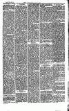 Southend Standard and Essex Weekly Advertiser Friday 20 June 1873 Page 3