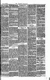 Southend Standard and Essex Weekly Advertiser Friday 20 June 1873 Page 7