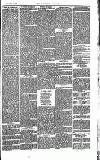 Southend Standard and Essex Weekly Advertiser Friday 19 September 1873 Page 3