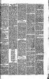 Southend Standard and Essex Weekly Advertiser Friday 03 October 1873 Page 3