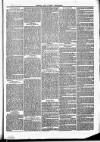 Herts & Cambs Reporter & Royston Crow Friday 11 January 1878 Page 3