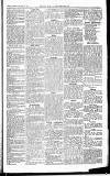 Herts & Cambs Reporter & Royston Crow Friday 18 January 1878 Page 5