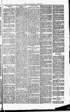 Herts & Cambs Reporter & Royston Crow Friday 18 January 1878 Page 7