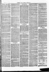 Herts & Cambs Reporter & Royston Crow Friday 25 January 1878 Page 7