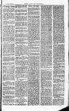 Herts & Cambs Reporter & Royston Crow Friday 15 February 1878 Page 3