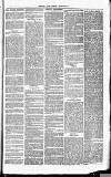 Herts & Cambs Reporter & Royston Crow Friday 22 February 1878 Page 3