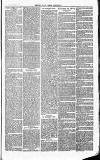 Herts & Cambs Reporter & Royston Crow Friday 01 March 1878 Page 7