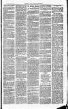 Herts & Cambs Reporter & Royston Crow Friday 15 March 1878 Page 3