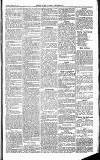 Herts & Cambs Reporter & Royston Crow Friday 15 March 1878 Page 5