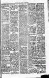 Herts & Cambs Reporter & Royston Crow Friday 12 July 1878 Page 3