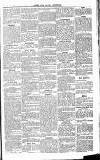 Herts & Cambs Reporter & Royston Crow Friday 12 July 1878 Page 5