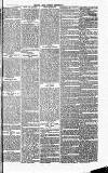 Herts & Cambs Reporter & Royston Crow Friday 26 July 1878 Page 7