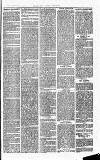 Herts & Cambs Reporter & Royston Crow Friday 02 August 1878 Page 3