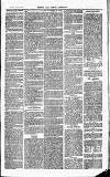 Herts & Cambs Reporter & Royston Crow Friday 16 August 1878 Page 3