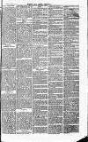 Herts & Cambs Reporter & Royston Crow Friday 16 August 1878 Page 7