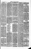 Herts & Cambs Reporter & Royston Crow Friday 23 August 1878 Page 3