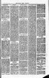 Herts & Cambs Reporter & Royston Crow Friday 30 August 1878 Page 3