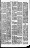 Herts & Cambs Reporter & Royston Crow Friday 13 September 1878 Page 3